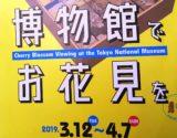 情報|博物館でお花見を@東京国立博物館(3/12~4/7)