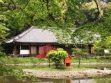 九体寺 本堂[浄瑠璃寺/京都]