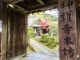 鑑賞ログ|神護寺 宝物虫払(5/1~5)