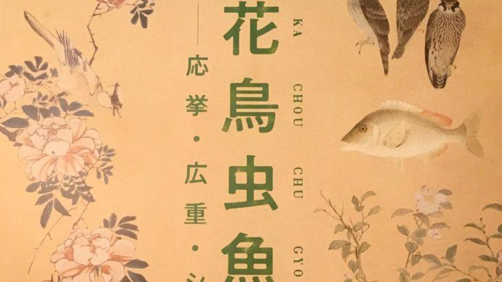 情報|花鳥虫魚を描く@和泉市久保惣記念美術館 2019/4/14~6/2