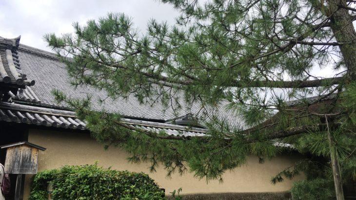 大徳寺 方丈・玄関[京都]